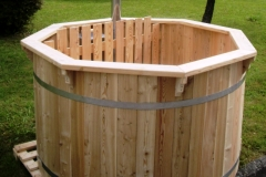 Hot tub Larch Viking6